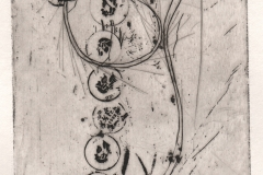gravure 48