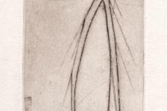 gravure 43